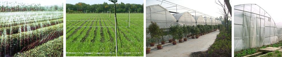 上海勤農溫室設備有限公司