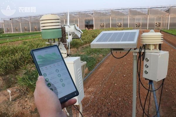 通过手机APP可对各个蔬菜大棚温度、湿度进行远程监控