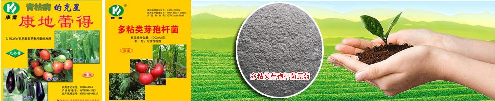上海澤元海洋生物技術有限公司