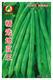 精选地豆王—菜豆种子