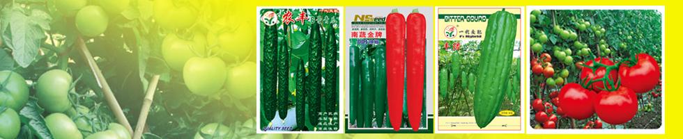 广州南蔬农业科技有限公司