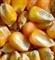 求购小麦、玉米、大豆等