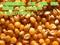 求购玉米小麦大豆