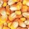 求购玉米 菜粕 豆粕等