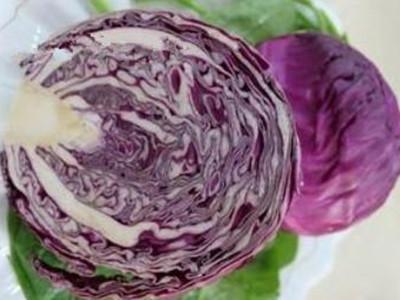 紫甘蓝烧心病的防治,病虫害防治,蔬菜网技术频道