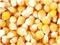 求购玉米,高粱,大豆等