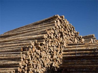 超级木材可替代合金(图)