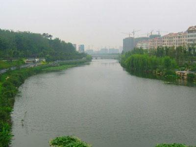 """崂山区中韩街道本着""""改善水体质量,提升沿线环境""""目标,全面开展张村河"""