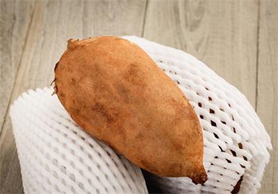 物源丨天山雪莲果or红薯?它到底是啥?(图)