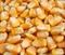 求�玉米高粱�S豆�w��