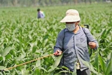肥料過期就不能用了?農業專家來告訴你!