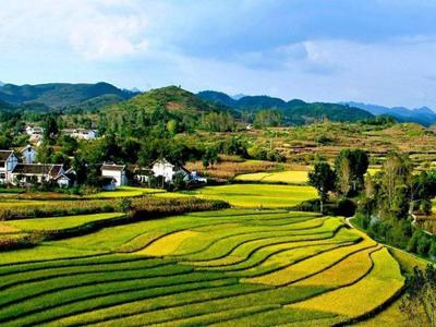 """国内综合 > """"一带一路""""与农业走出去(图)    与""""一带一路""""沿线国家"""