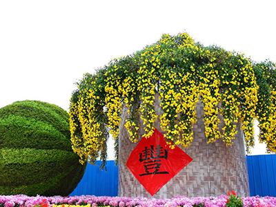 河南开封产业支撑乡村经济发展