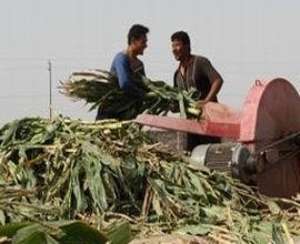新疆农机购置补贴增加40倍