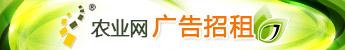 中国蔬菜网广告位招租344*50
