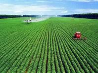 """惠州为绿色农业再""""出招"""""""