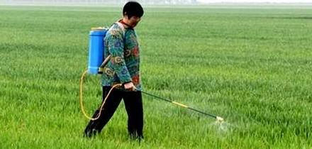 除草剂涨价 其它农药价格平稳