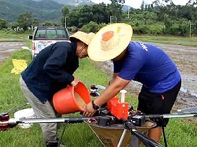 台山:羽人无人机播种 省时省力效率高