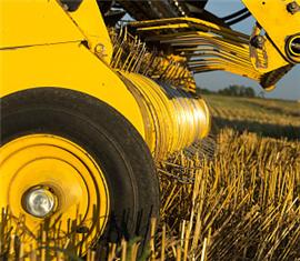 引领水稻机械化栽培技术发展