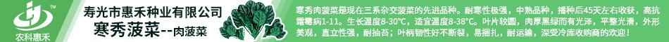 寿光市惠禾种业有限公司