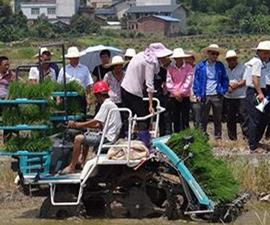 衡陽祁東:春耕忙 機械助力種田郎