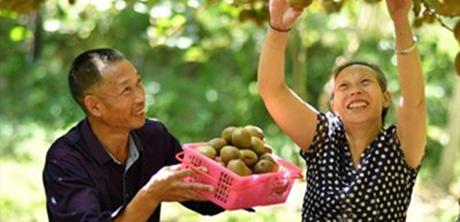 上饶:种植水果带头致富