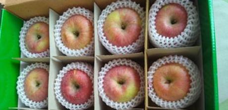 佛山:十里甜水果发胖不长廊正式开园