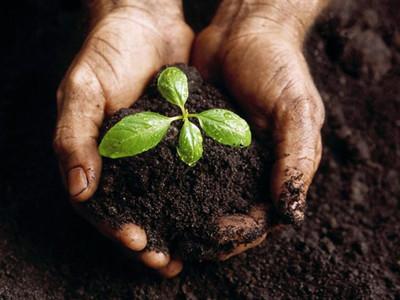 2019特種肥料大會在天津召開